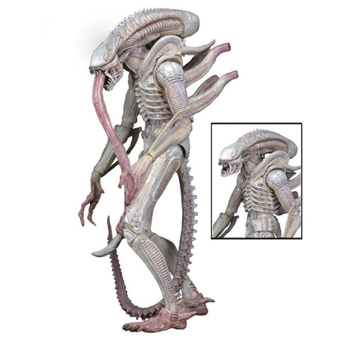 Aliens Series 9 - Albino Alien