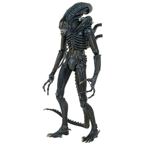 Aliens 1/4 Scale - Warrior Alien