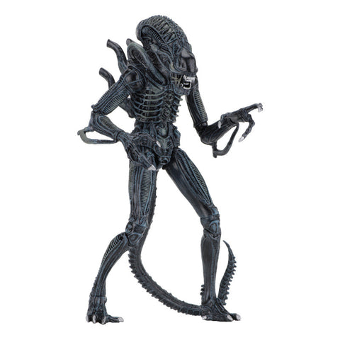 Aliens - Ultimate Warrior Alien (Blue)