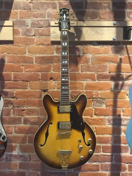Jay Turser Double Cutaway Archtop Hollowbody