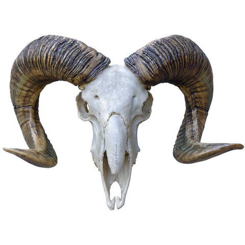 Bohemian Resin Painted Ibex Head ornament