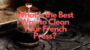 4 Ways to Clean French Press Properly