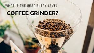 What is the Best Electric Coffee Grinder for French Press?