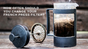 How Often Should You Replace Your French Press Filter?