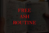 Ash Routine - Gemini Artifacts