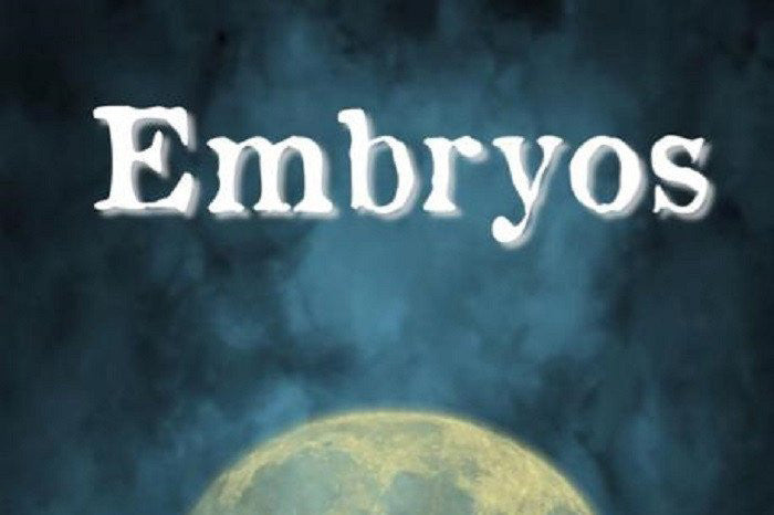 Embryos - Gemini Artifacts