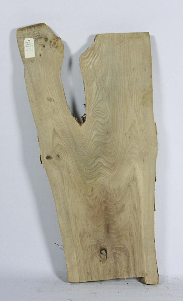 Live Edge Hardwood Slab: American Elm, Rough Sawn