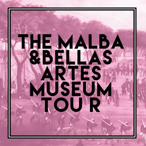 Private MALBA and Bellas Artes Museum Tour