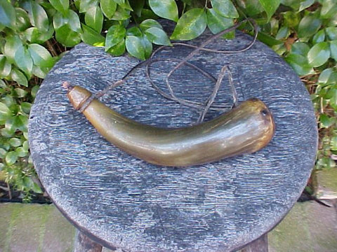 A Small American Colonial Powder Horn, #487