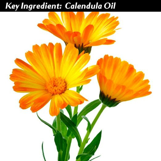 Vi-Tae Ingredient Calendula Officinalis (Calendula) Flower Oil