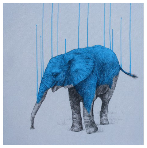 Wild Strength by Louise McNaught - Limited Edition