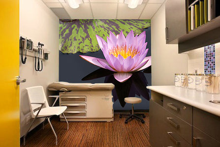 Healthcare and examination room art I Artwork by Henry Domke I Blink