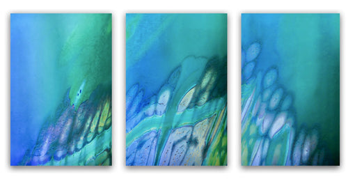Emily Randolph, artist, Coral Reef Triptych, ADC Fine Art, Photography, original art
