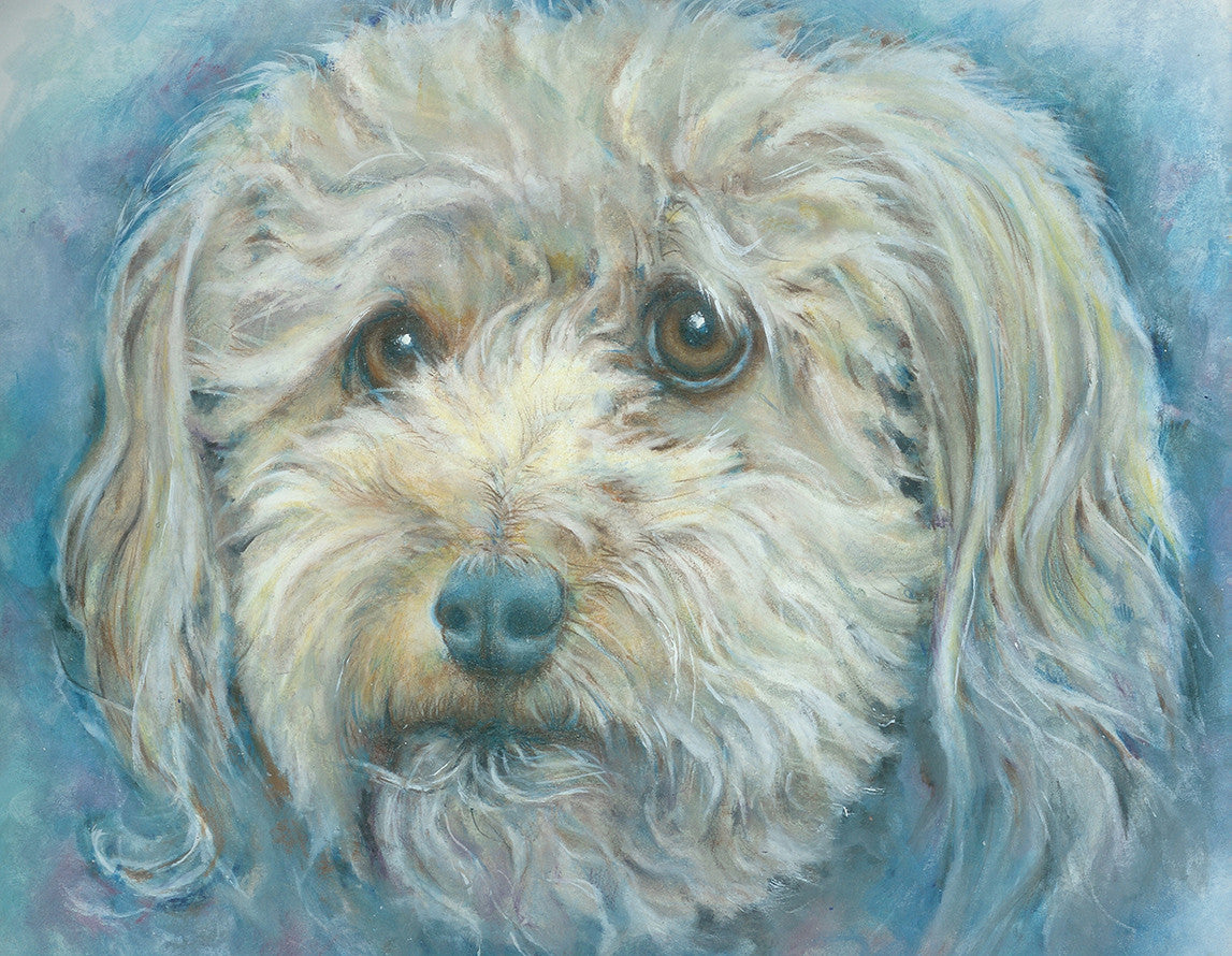 Untitled Dog Portrait / 20 x 16 / color pencil - mixed media
