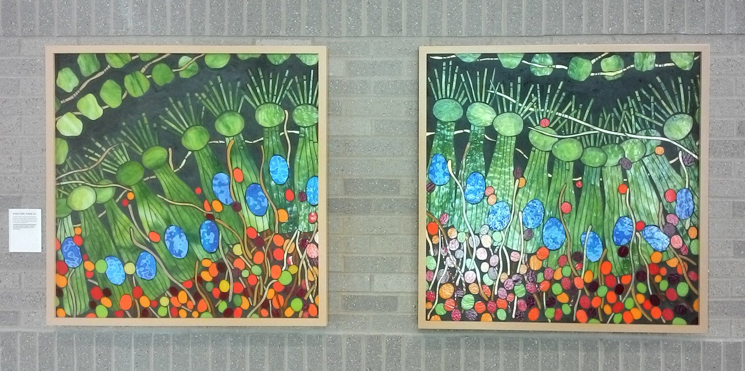 I Hear You (Cochlear Nerve Cells) / 36 x 36 each - diptych / mosaic glass