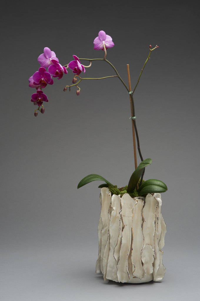 Orchid Pot / 5 x 10 / porcelain