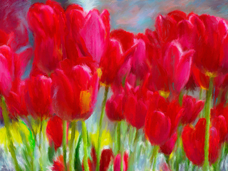 Red Tulips / 49x37 / pigments - acrylics on canvas