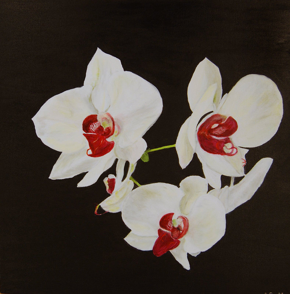 White Orchids / 24 x 24 / acrylic on canvas