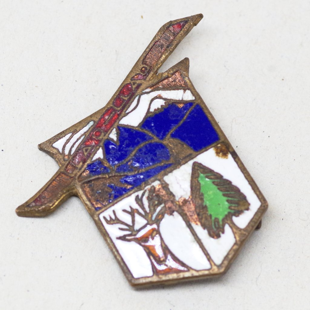 Mountain Scene Pin