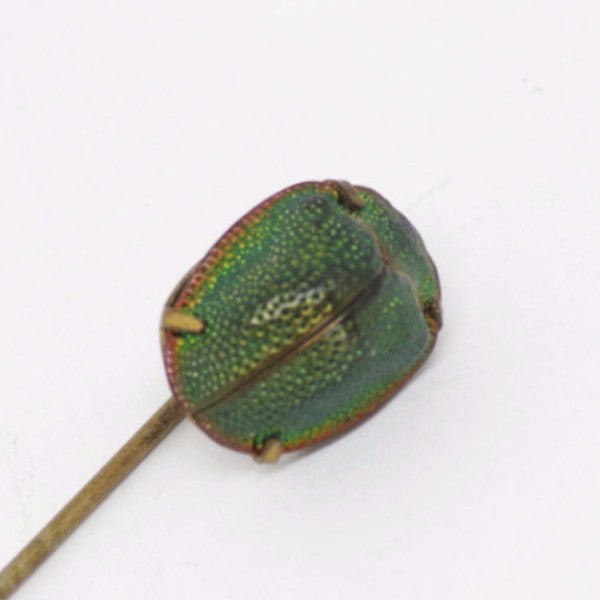 Victorian Green Scarab Gold Stick Pin