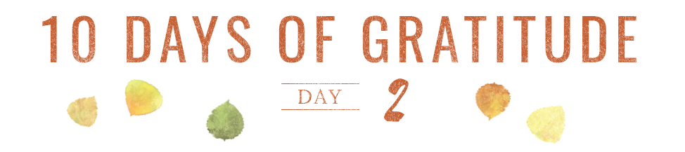 10 Days of Gratitude - Day 2