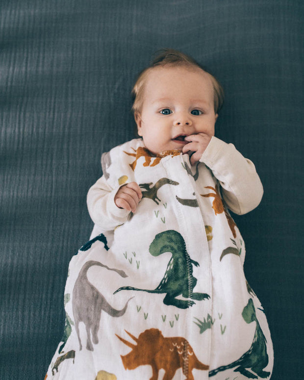 Cotton Muslin Sleep Bag - Dino Friends