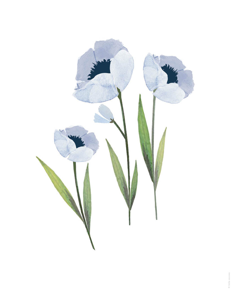 Printable Download - Blue Windflower 3