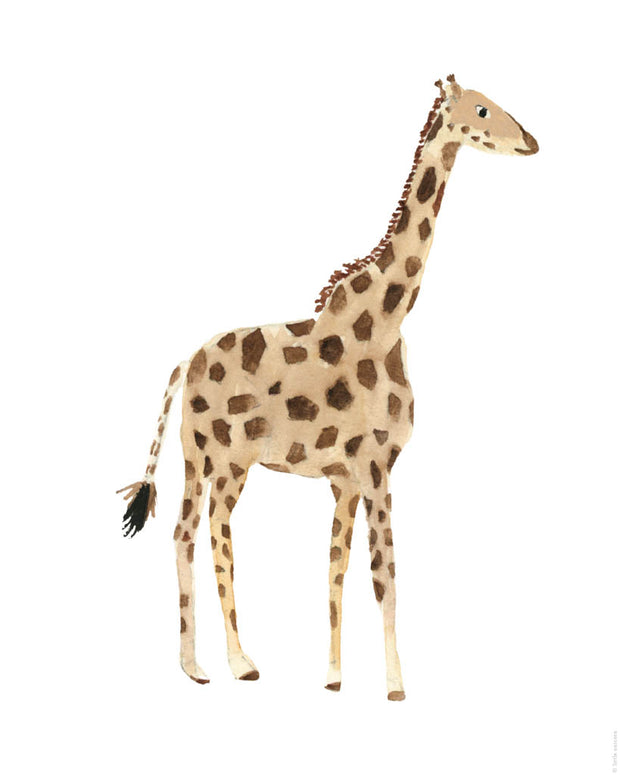 Printable Download - Giraffe