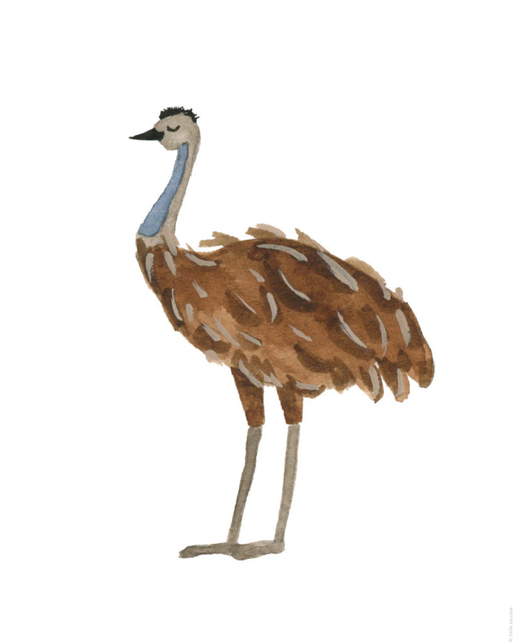 Printable Download - Ostrich