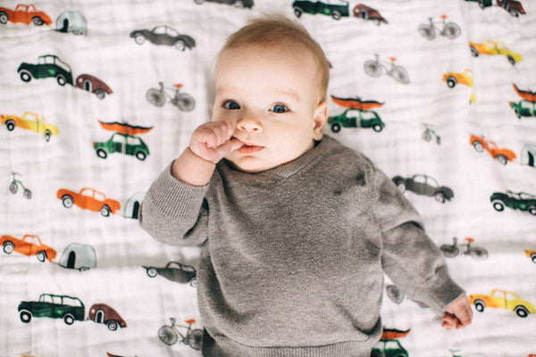 Cotton Muslin Swaddle Blanket Set - Traffic Jam