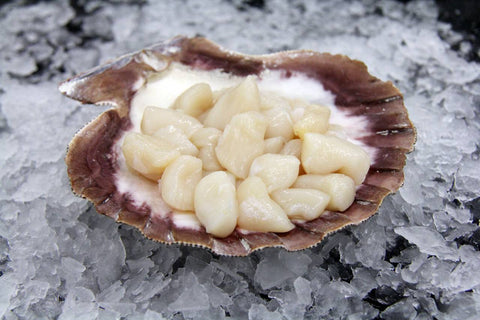 Fresh Sushi Grade Dry Diver Bay Scallops