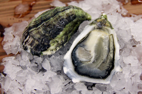Mission Oysters