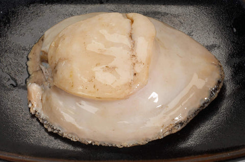 Frozen Large Wild Abalone Meat