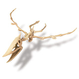 """Dig A Dinosaur Skeleton: Pterosaur"" - Science Kit  - LabRatGifts - 2"