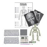 """Glow Human Skeleton"" - Science Kit  - LabRatGifts - 3"
