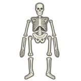 """Glow Human Skeleton"" - Science Kit  - LabRatGifts - 2"