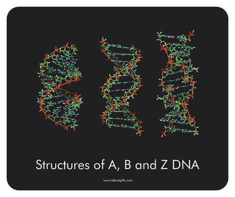 """Structures of A, B, and Z DNA"" - Mouse Pad Default Title - LabRatGifts"