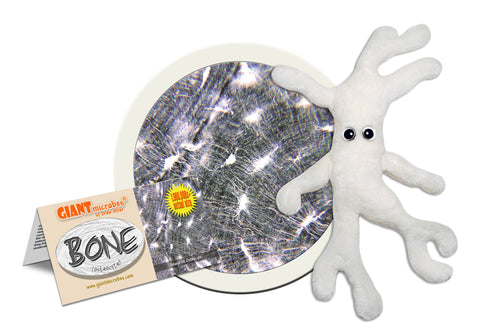 Bone Cell (Osteocyte) - GIANTmicrobes® Plush Toy Default Title - LabRatGifts - 1