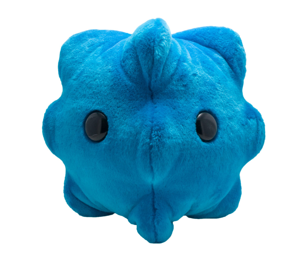 Common Cold (Rhinovirus) - GIANTmicrobes® GIGANTIC Plush Toy Default Title - LabRatGifts - 2