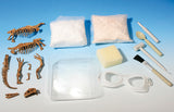 """Dinosaur Fossils"" - Science Kit  - LabRatGifts - 4"
