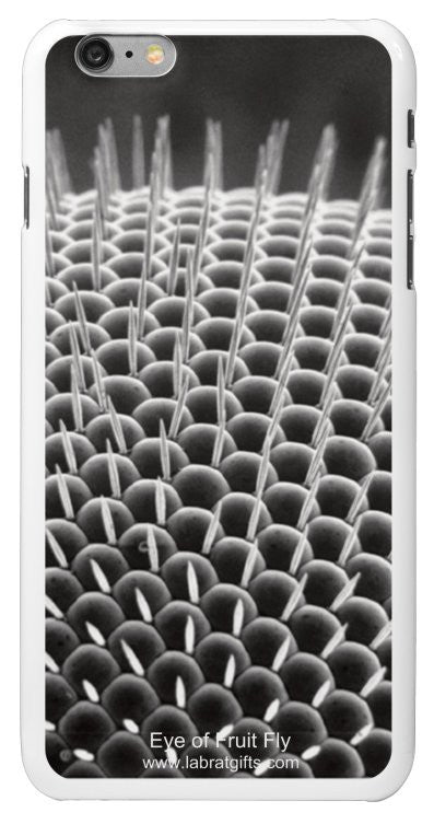 """Eye of Fruit Fly"" - iPhone 6/6s Plus Case Default Title - LabRatGifts - 2"