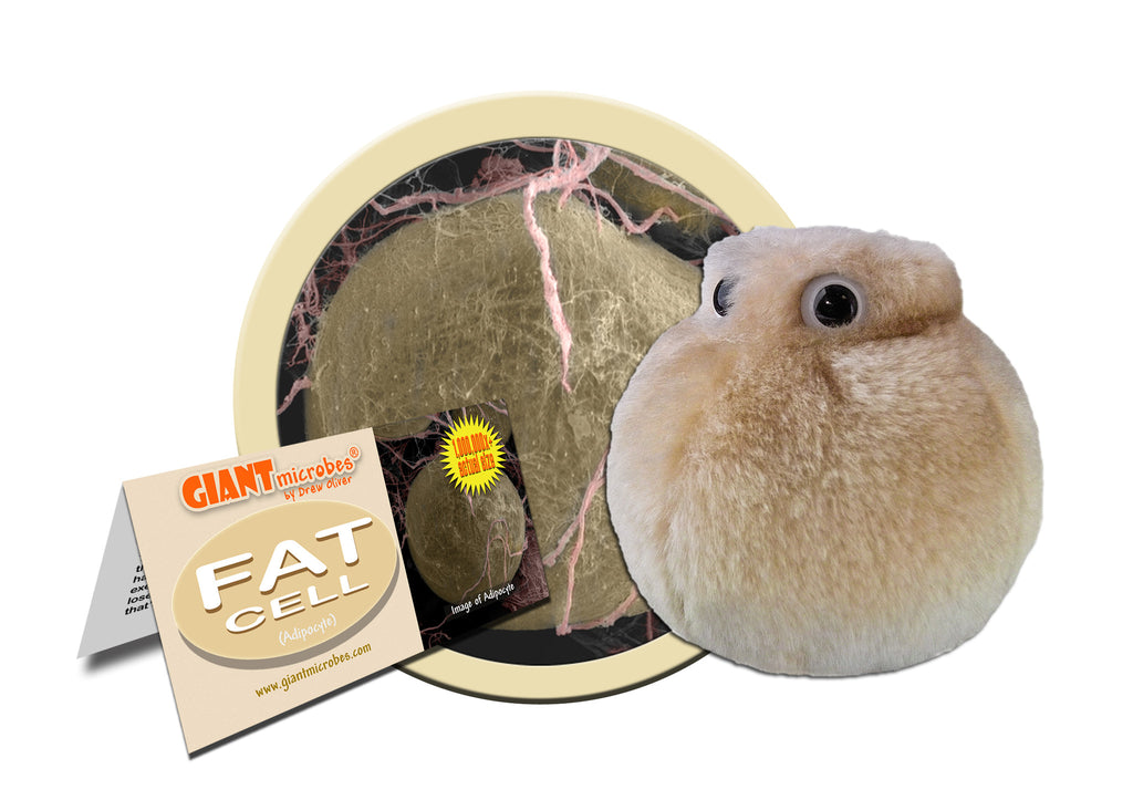 Fat Cell (Adipocyte) - GIANTmicrobes® Plush Toy Default Title - LabRatGifts - 1