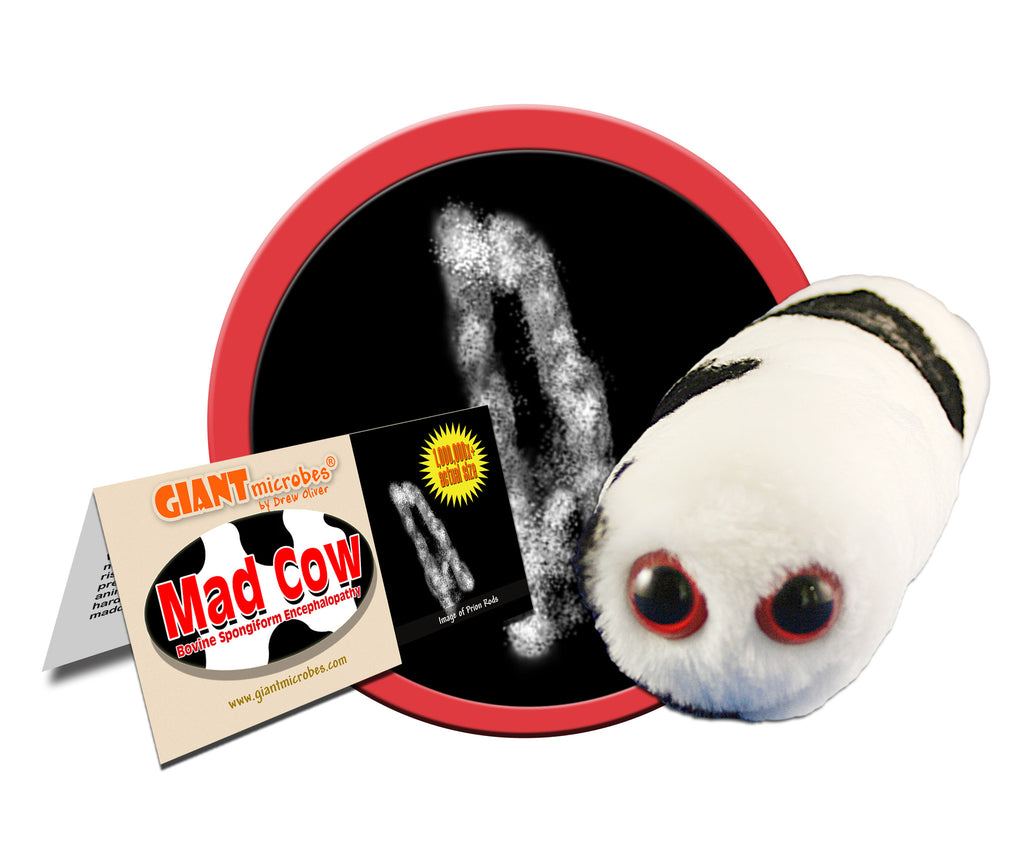 Mad Cow (Bovine Spongiform Encephalopathy) - GIANTmicrobes® Plush Toy Default Title - LabRatGifts - 1
