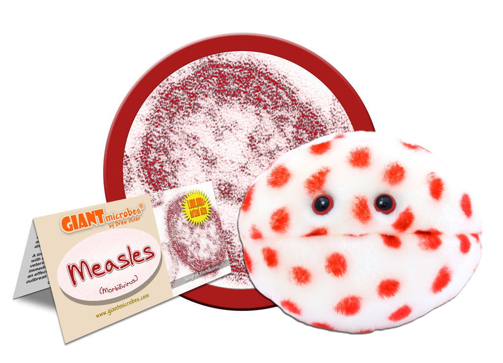 Measles (Morbillivirus) - GIANTmicrobes® Plush Toy Default Title - LabRatGifts - 1
