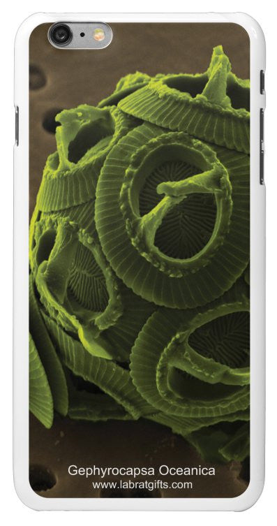 """Gephyrocapsa Oceanica"" - iPhone 6/6s Plus Case Default Title - LabRatGifts - 2"