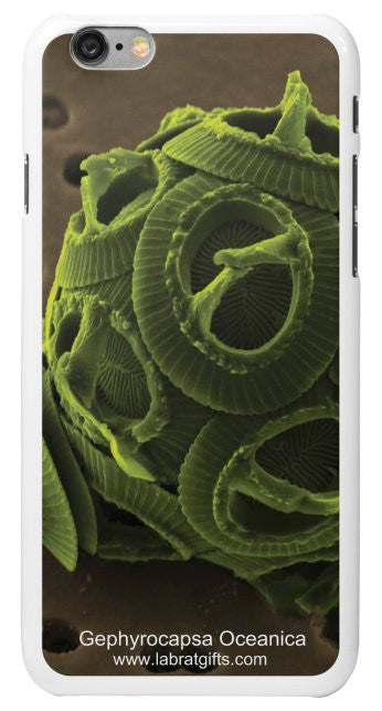 """Gephyrocapsa Oceanica"" - iPhone 6/6s Case Default Title - LabRatGifts - 2"