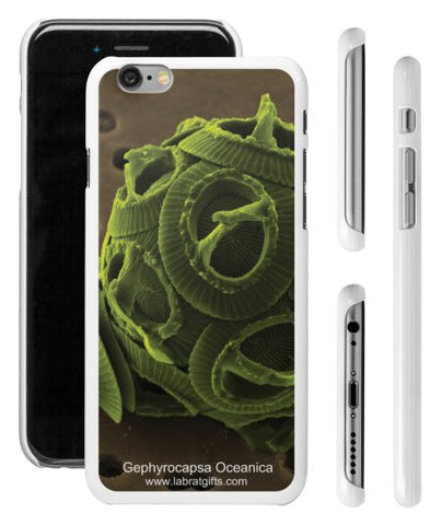 """Gephyrocapsa Oceanica"" - iPhone 6/6s Case  - LabRatGifts - 1"
