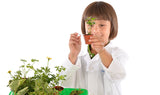 """Botany: Experimental Greenhouse"" - Science Kit  - LabRatGifts - 5"