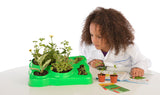 """Botany: Experimental Greenhouse"" - Science Kit  - LabRatGifts - 4"