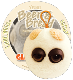 Beer & Bread (Saccharomyces Cerevisiae) - GIANTmicrobes® Keychain  - LabRatGifts